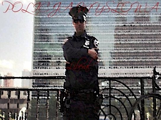 POLICJA MYSLOWA